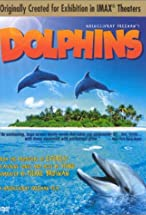 Primary image for Dolphins