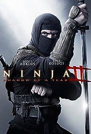 Ninja: Shadow of a Tear Poster