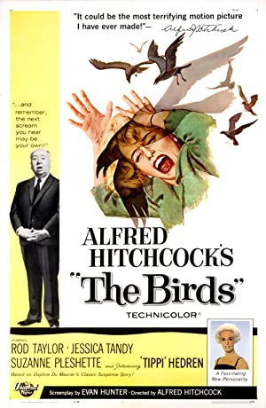 The Birds Pelicula Poster