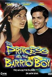 Barrio Boy Critical Essays