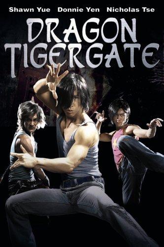 Dragon Tiger Gate 2006 Dual Audio Hindi Eng BRRip 720p 800MB watch online download