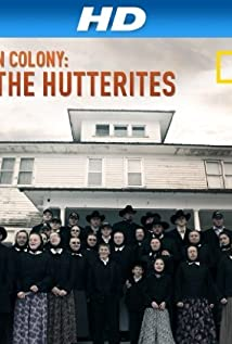 american colony meet the hutterites review of systems