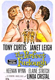 The Perfect Furlough Poster