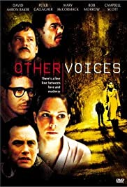 Other Voices Poster