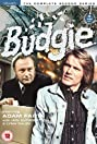 Budgie (1971) Poster