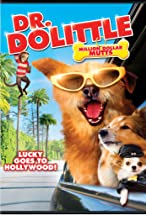 Primary image for Dr. Dolittle: Million Dollar Mutts