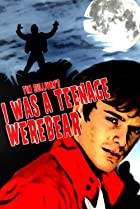 I Was a Teenage Werebear (2011) Poster