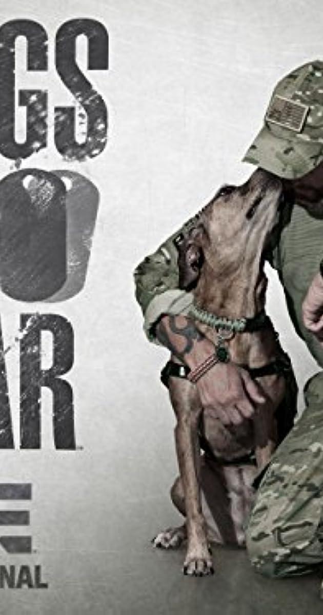 Imdb War Dogs