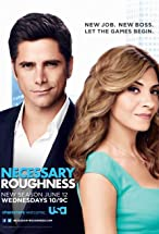 Primary image for Necessary Roughness