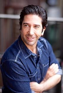 David Schwimmer Picture
