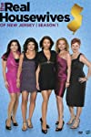 'The Real Housewives of New Jersey' Poll: Will Danielle Staub's Return Be Good or Bad for the Show?