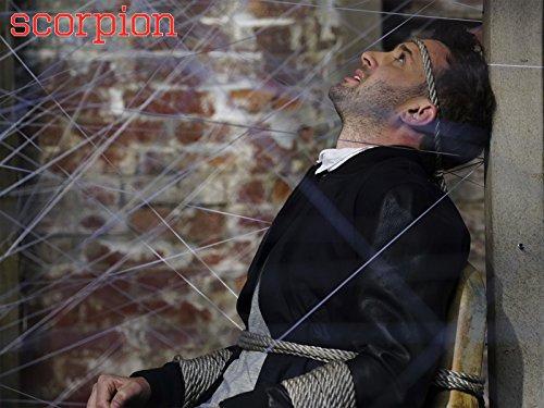 Scorpion: Toby or Not Toby | Season 2 | Episode 24