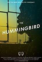 Primary image for The Hummingbird