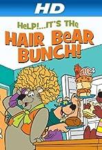 Help!... It's the Hair Bear Bunch!