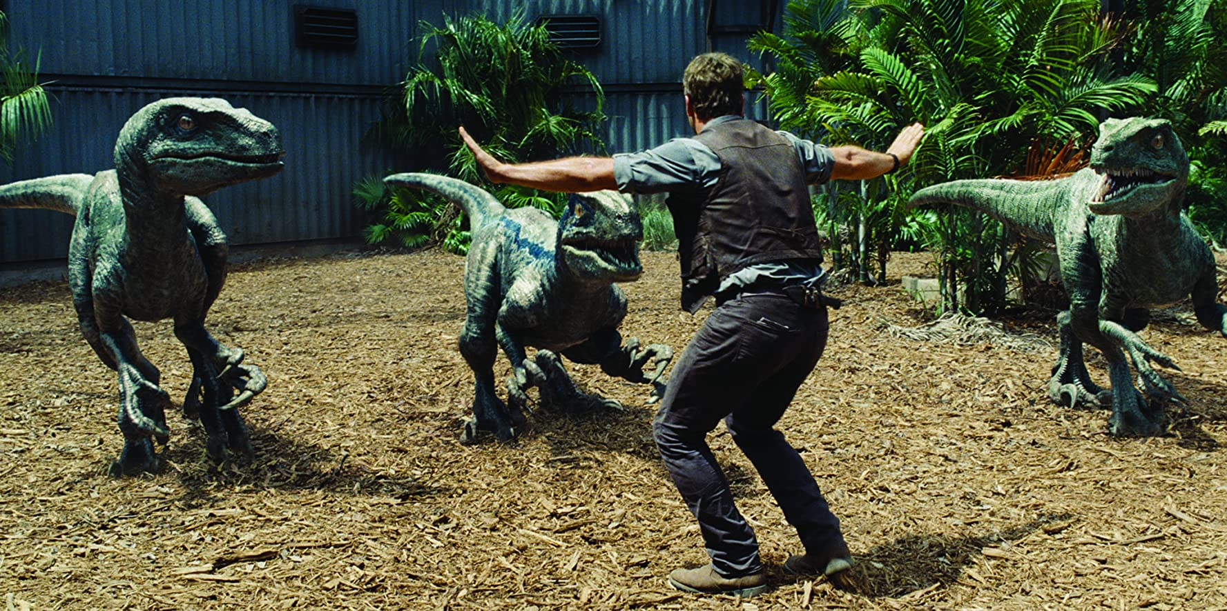 Chris Pratt in Jurassic World (2015)