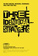 Three Identical Strangers 2018