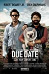 Due Date Movie Review