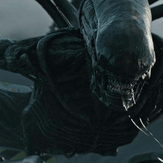 Goran D. Kleut in Alien: Covenant (2017)
