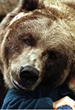 Bart the Bear's primary photo