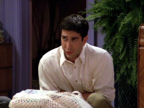 Friends: The One with the Dozen Lasagnas | Season 1 | Episode 12