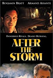 After the Storm (2001) Poster - Movie Forum, Cast, Reviews