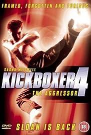Kickboxer 4: The Aggressor Poster