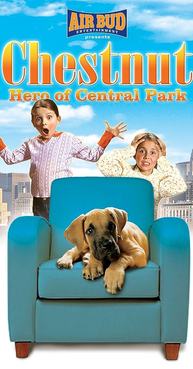 Dog Park Kc