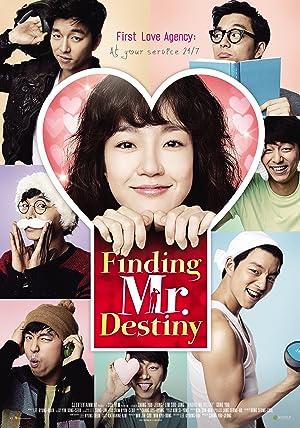 Finding Mr Destiny (2010)