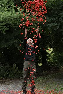 Andy Goldsworthy Picture