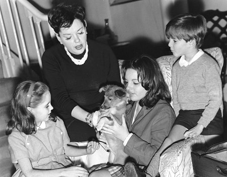 Pictures & Photos Of Judy Garland - IMDb
