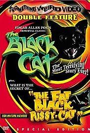 The Black Cat(1966) Poster - Movie Forum, Cast, Reviews