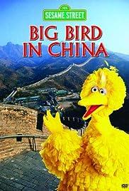 Big Bird in China Poster