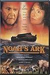 Chinese man builds `Noah's Ark` to keep disasters at bay - Realbollywood.com News