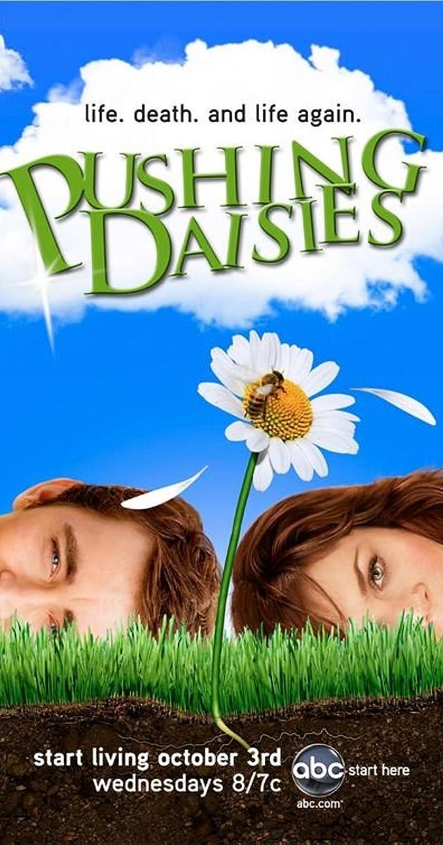 pushing daisies tv series 2007�2009 imdb