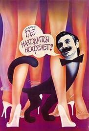 Gde nakhoditsya Nofelet? Poster