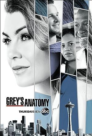 Bild von Grey's Anatomy