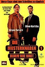 Primary image for Die Musterknaben