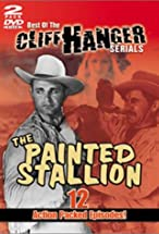 Primary image for The Painted Stallion