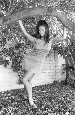 1960 nudewomen Nude Photos