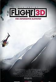 The Art of Flight Poster