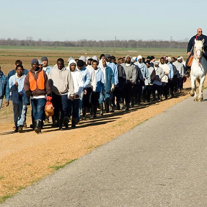 The Farm: Angola, USA (1998)