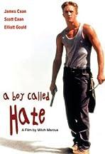 A Boy Called Hate