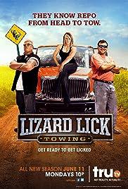 Lizard Lick Towing Poster