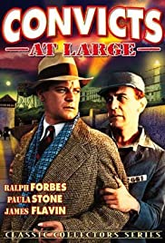 Convicts at Large Poster