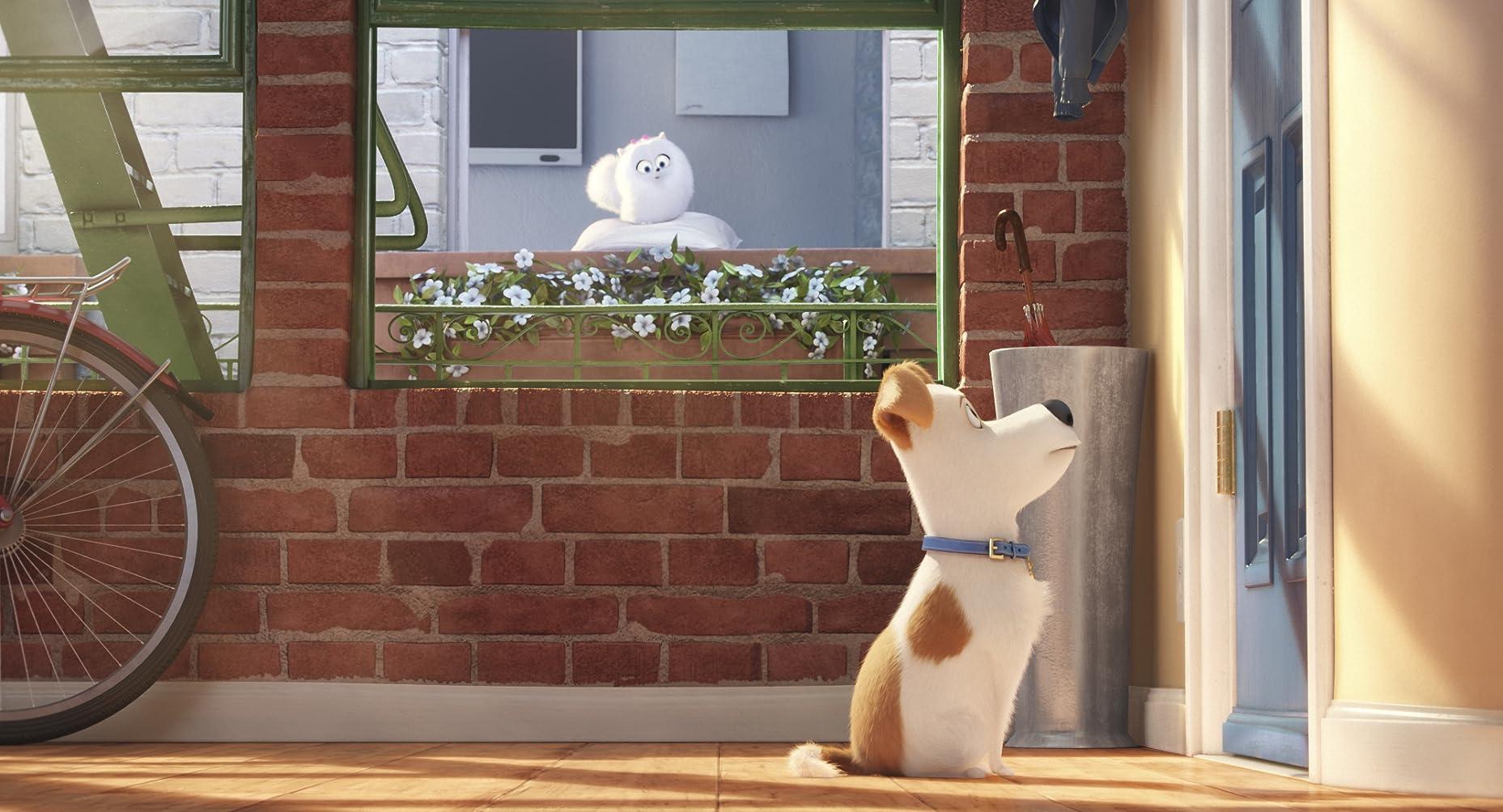 The Secret Life of Pets - Teaser Trailer 2