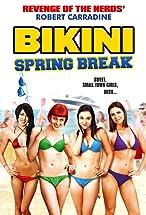Primary image for Bikini Spring Break