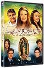 La rosa de Guadalupe (2008) Poster