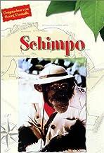 Schimpo, was macht ein Aff' in Afrika