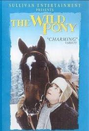 The Wild Pony Poster