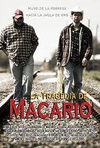 Primary image for La tragedia de Macario